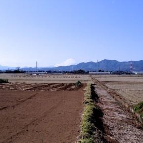 旅音 東京〜大阪(太陽の塔)東海道16日間徒歩の旅 2日目 相模大野〜平塚