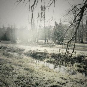 Yozhik「In The Fog」限定カセット・CDR、配信版リリース